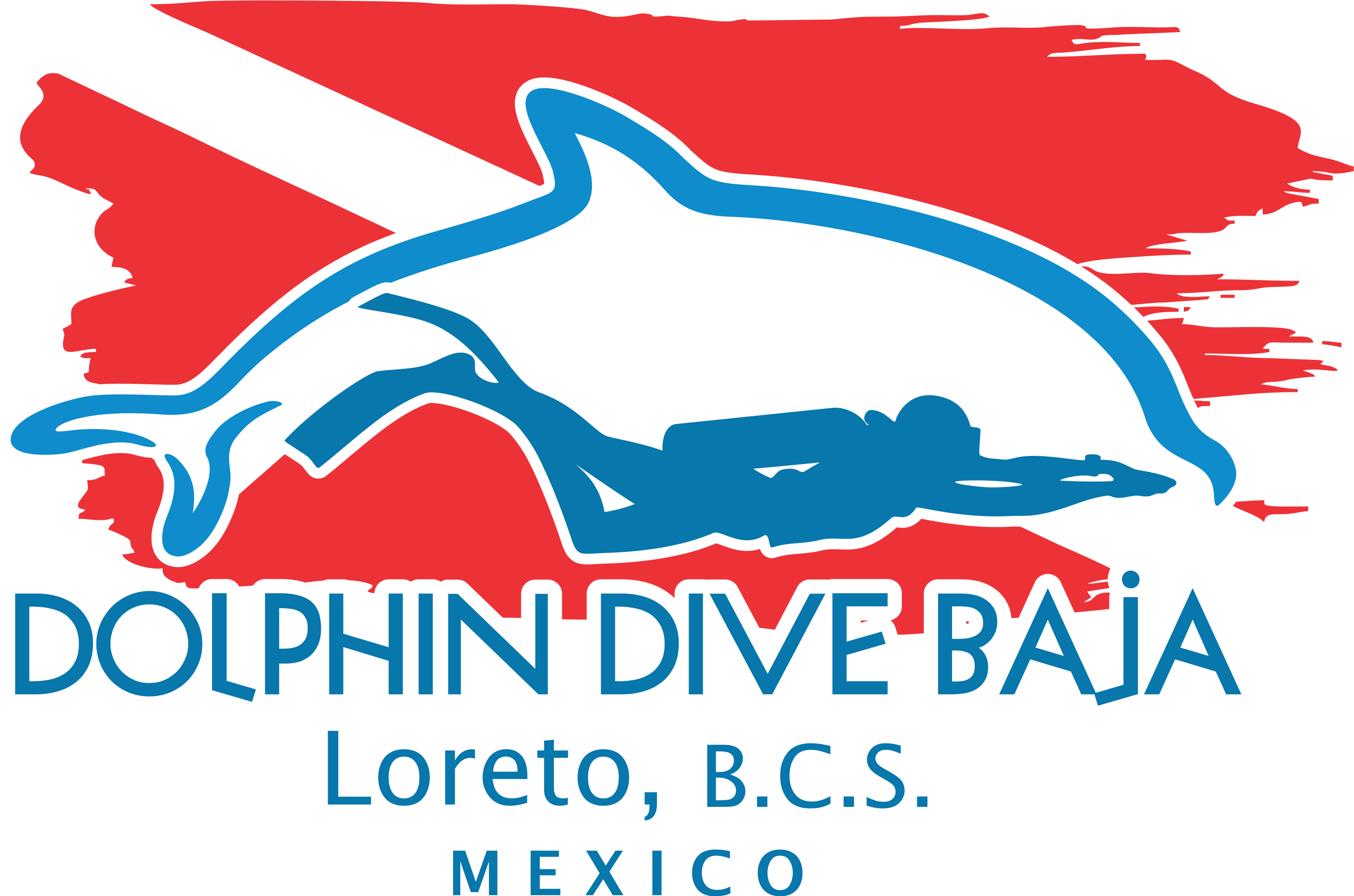 Dolphin Dive Partner